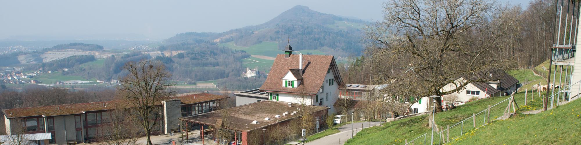 Effingerhort AG