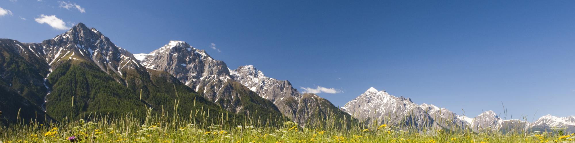 WWF Glarus, Graubünden und Schwyz