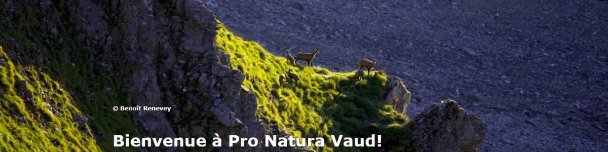 Pro Natura Vaud cover