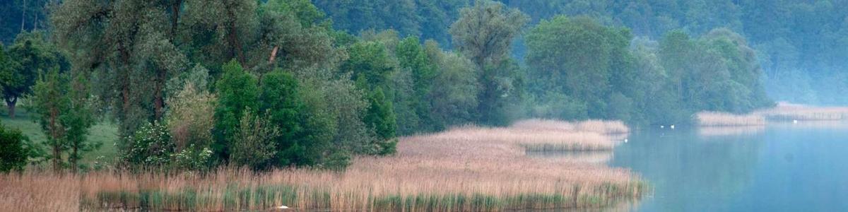 Pro Natura Berner Mittelland cover