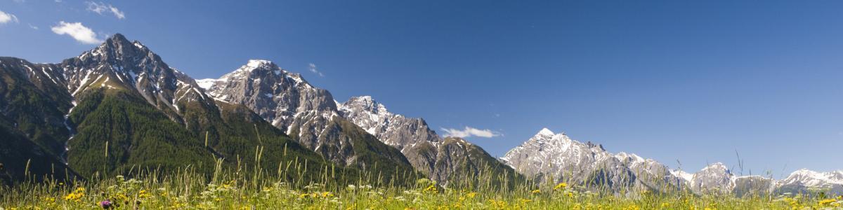 WWF Glarus, Graubünden und Schwyz cover