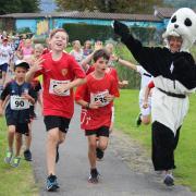 Mithilfe als rennender Panda am WWF Lauf