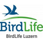 Verantwortliche Finanzen BirdLife Luzern job image