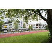 AZ Stadtgarten sucht eine Spazierbegleitung job image
