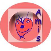 Association pour des projets Multi et Interculturels